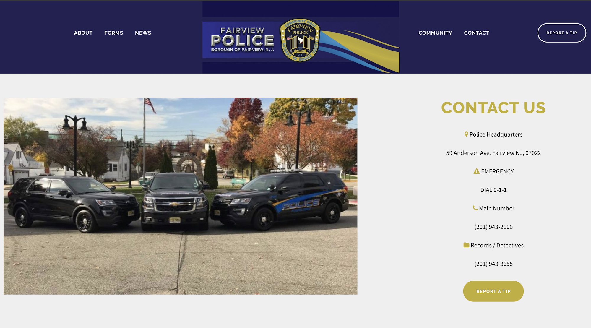 Screenshot of the Fairview Police Department homepage